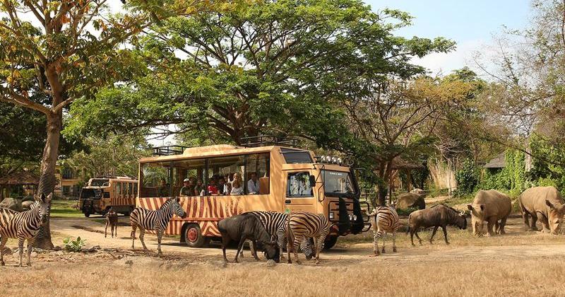 1. Bali Safari & Marine Park