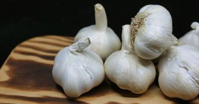 Luar biasa Ini Dia 5 Manfaat Bawang Putih Kecantikan