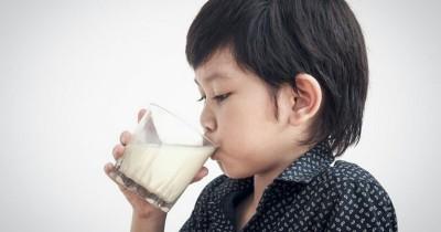 Anak Tiba-Tiba Alergi Telur Susu Sapi, Kok Bisa