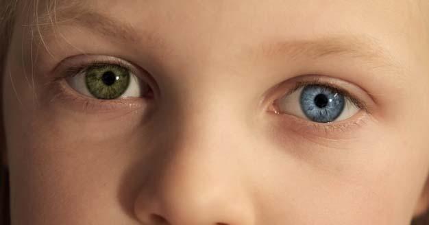 4. Dua hal memengaruhi bentuk ekspresi gen anak