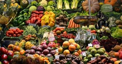 Jangan Asal, 7 Bahan Makanan Ini Tidak Boleh Dimakan Mentah