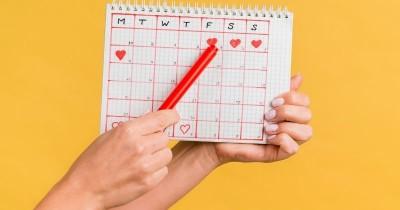 7 Rekomendasi Merek Alat Tes Ovulasi Beserta Harganya