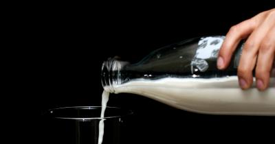 Sering Dikonsumsi, Benarkah Susu Kambing Bisa Melancarkan ASI?