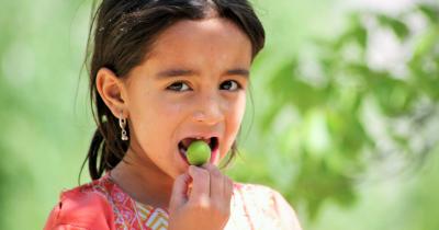 Bergizi, Ini 10 Buah Mengandung Vitamin E Anak