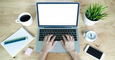 7 Tanaman Hias yang Cocok Diletakkan di Meja Kerja