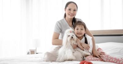 5 Hewan yang Dipercaya bisa Datangkan Energi Positif Menurut Feng Shui