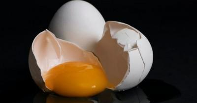 Sumber Protein, Ini Dia 5 Manfaat Kuning Telur Kesehatan