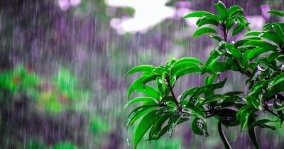 BMKG Imbau Masyarakat Waspada Hujan Lebat 26 27 Februari