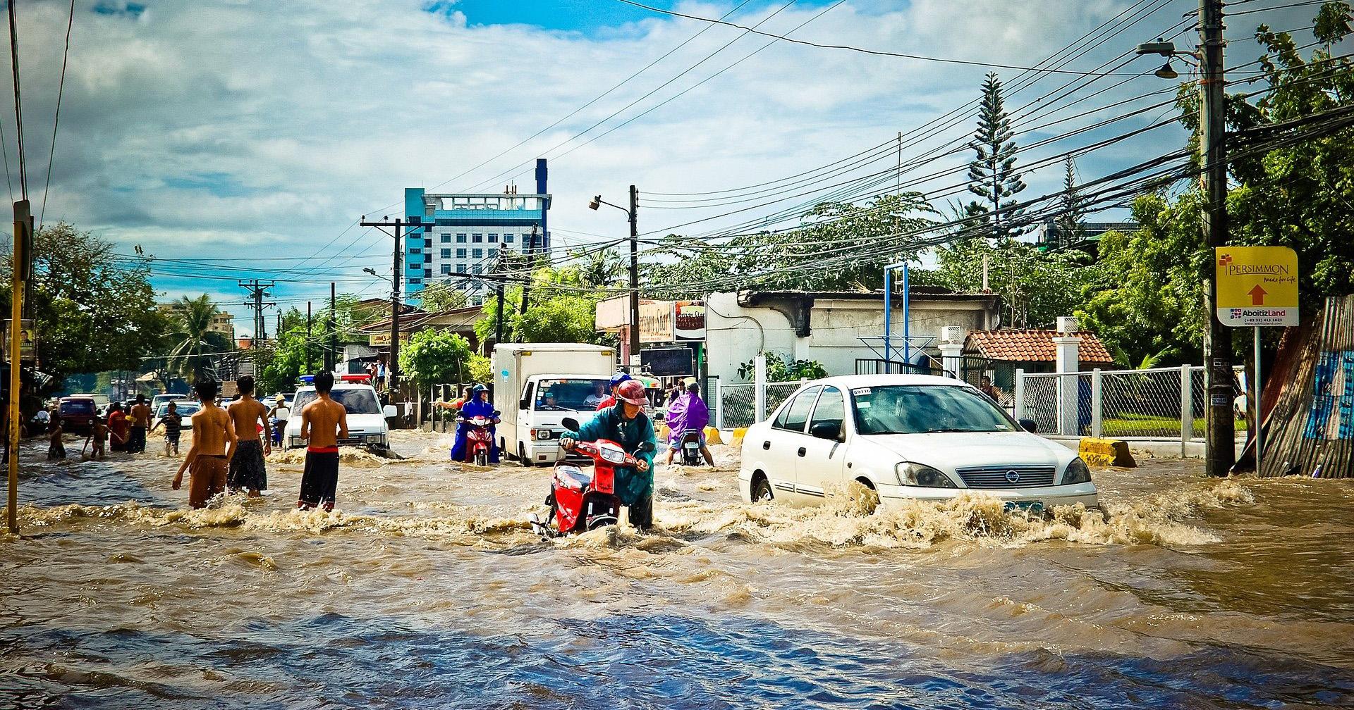 6. Mencegah banjir