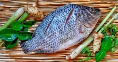 Benarkah Konsumsi Ikan saat Hamil Menyebabkan Anak Mengalami Autisme?