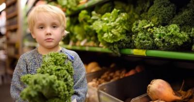 Kaya akan Gizi, 9 Manfaat Sayur Kale Anak Balita