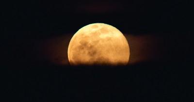 Ada Fenomena Pink Moon, Apakah Bulan Berubah Jadi Warna Pink