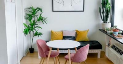 5 Keuntungan Menaruh Tanaman Dalam Rumah