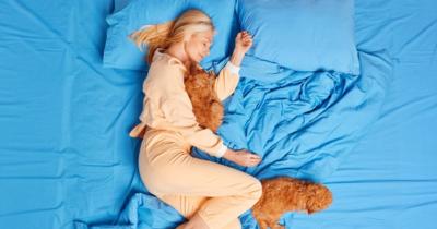 5 Rekomendasi Merek Spring Bed Fitur Antibakteri