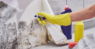 8 Cara Mudah Membersihkan Dinding Lembap Berjamur