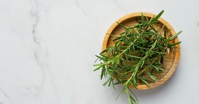 5 Cara Merawat Rosemary di Rumah, Tanpa Perlu Ribet