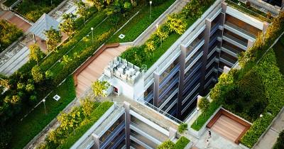 7 Manfaat Rooftop Garden Rumah Jarang Disadari