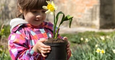 Tambah Pengetahuan Anak, 6 Bagian Tumbuhan serta Fungsinya