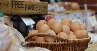 Waspada, Telur Tidak Disarankan Disimpan di Rak Pintu Kulkas