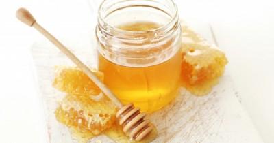 Tingkatkan Produksi ASI, 5 Manfaat Clover Honey Ibu Menyusui