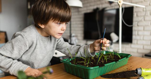 7. Bantu anak mengalami kesuksesan