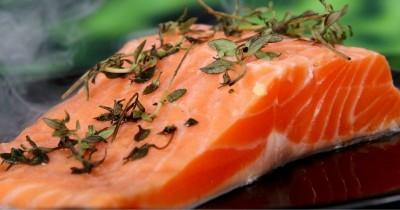 Cara Menyimpan Salmon agar Tahan Lama