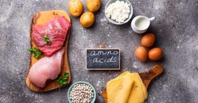 7 Makanan yang Menjadi Sumber Asam Amino Esensial untuk Anak