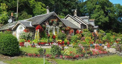 Bisa Bikin Pikiran Tenang, Ketahui 8 Manfaat Taman di Rumah