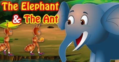 Cerita Fabel Anak Kisah Gajah Semut