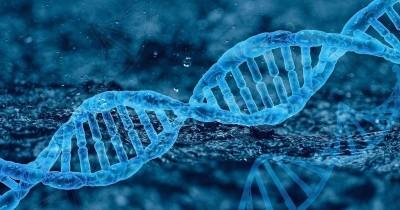 Cara Penyakit Genetik Menurun Ke Janin. Ada Bisa Dicegah