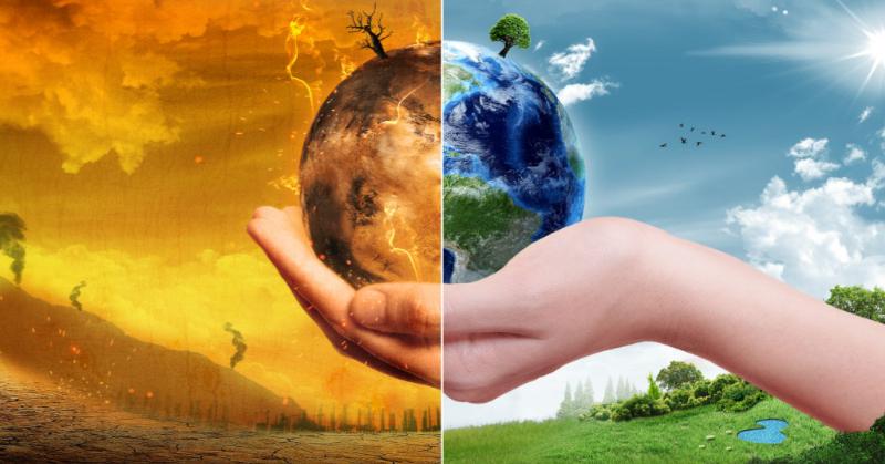 3. Mengurangi dampak pemanasan global