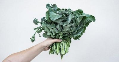 Saat Program Hamil, Penuhi Kebutuhan 5 Sayuran Kaya Beta Karoten Ini
