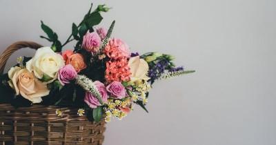 10 Jenis Bunga Bisa Dimakan Bermanfaat bagi Kesehatan