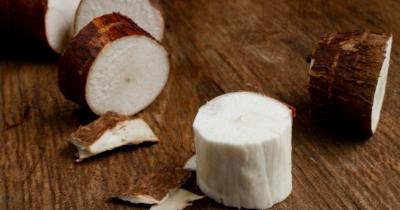 Bolehkah Balita Makan Tape Singkong