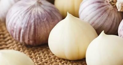 Banyak khasiatnya, Ini Beberapa Cara Mengonsumsi Bawang Putih Tunggal
