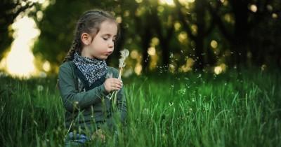 7 Kepribadian Anak yang Menyukai Warna Hijau yang Kreatif