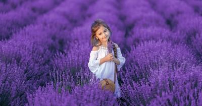Si Penyayang, ini 7 Kepribadian Anak Suka Warna Ungu