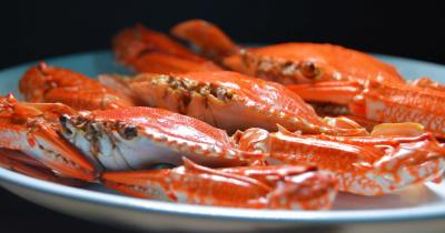 Bolehkah Anak Balita Makan Kepiting?