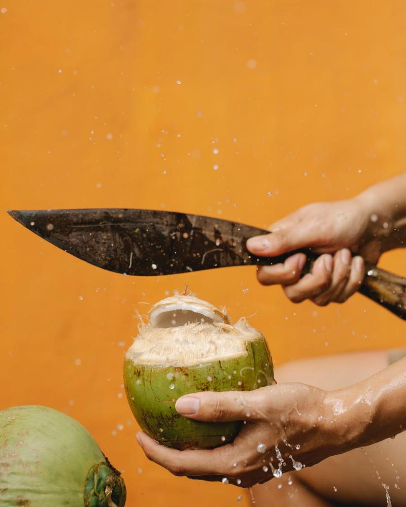 6. Kecap dari air kelapa (homemade)